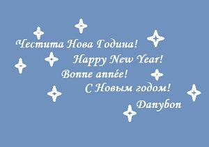 4ng 2013 danybon