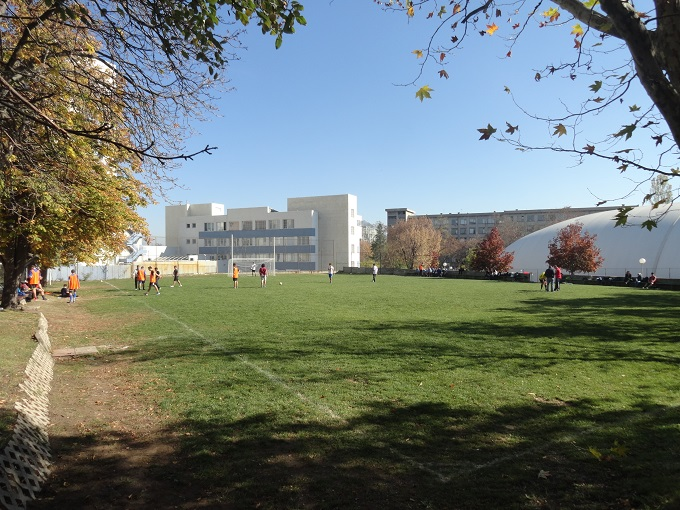 info sresta american college 2013 12