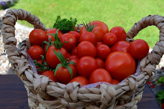 tomatoes-5486197_640