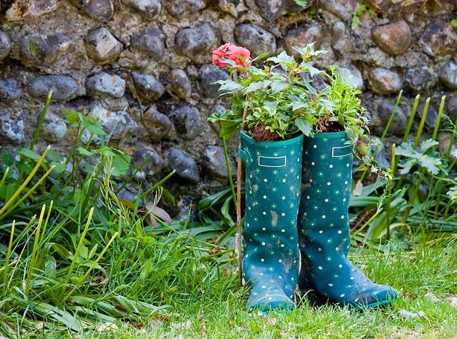 wellington-boots-76867_640